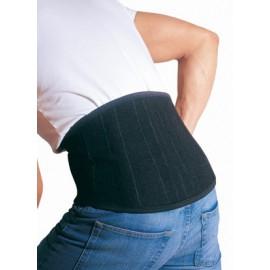 ceinture dorsale