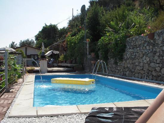 palme piscine