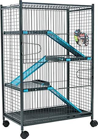 cage a chinchilla