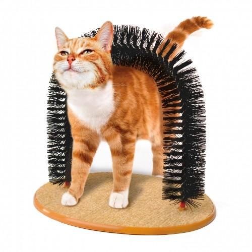 chat accessoire