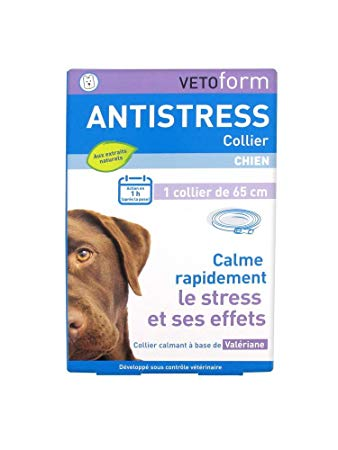 collier anti stress chien