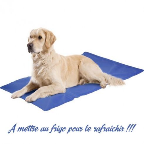 couverture rafraichissante chien