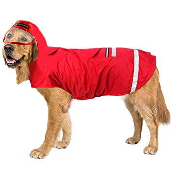 impermeable chien grande taille