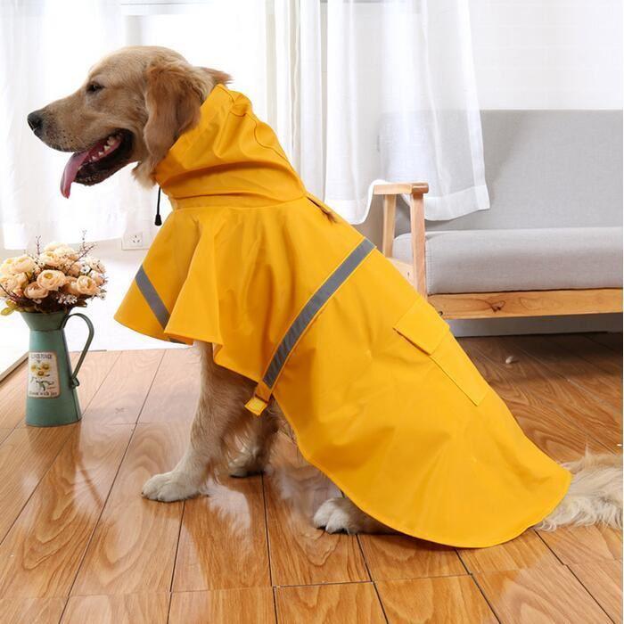 impermeable chien