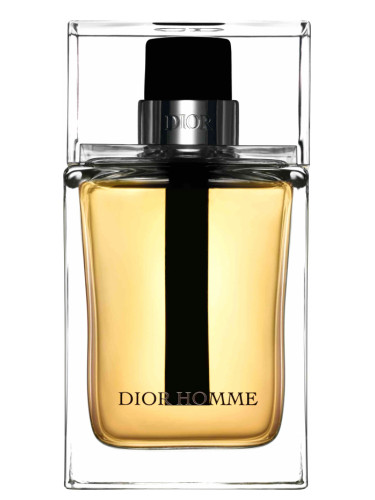 l homme dior