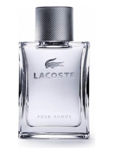lacoste homme parfum