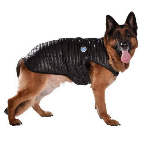 manteau pour grand chien