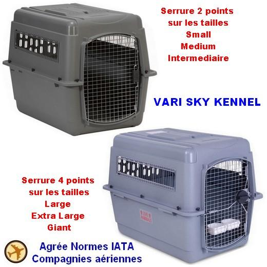 transport chat avion