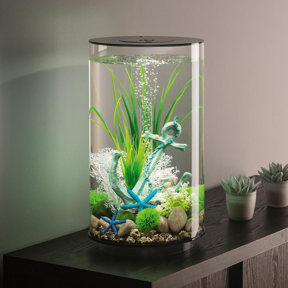 tube aquarium