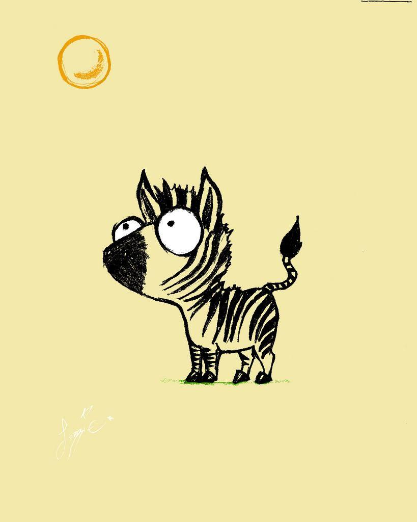 petit zebre
